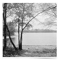 Image of Walden Pond
