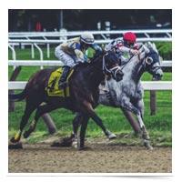 Jockeys in a close horse race.